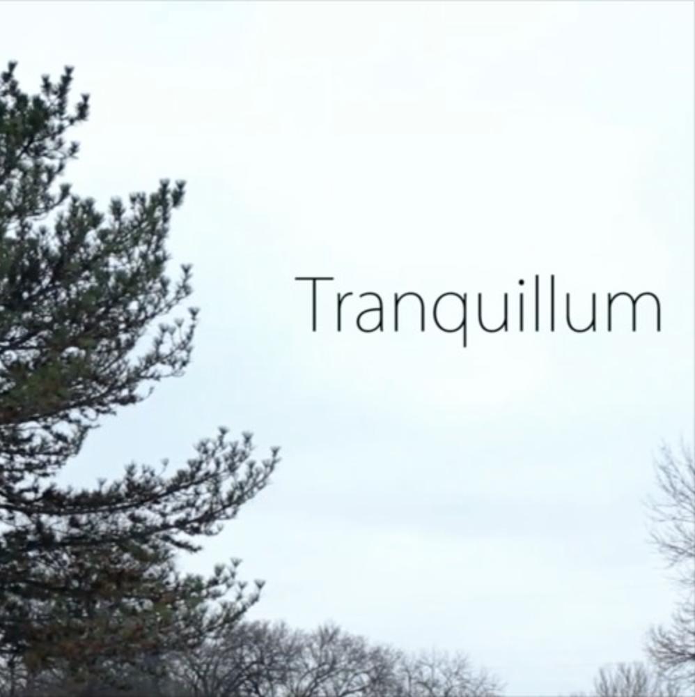 Tranquillum - Short