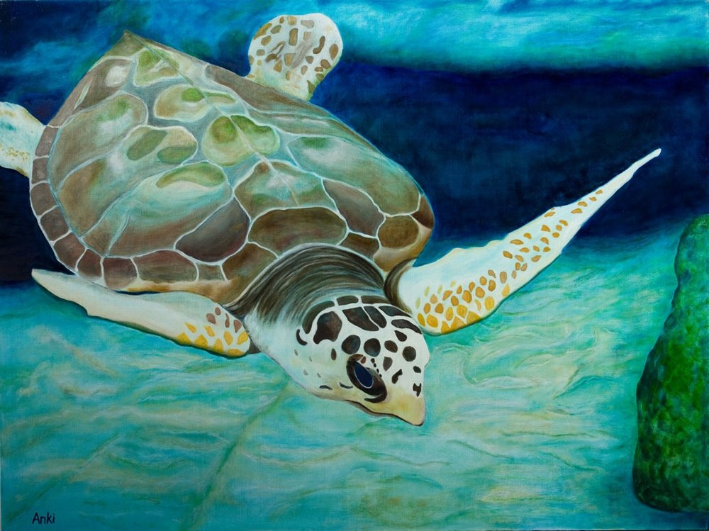 """Leatherback, Oil on Canvas 30""""x40"""". SOLD"""