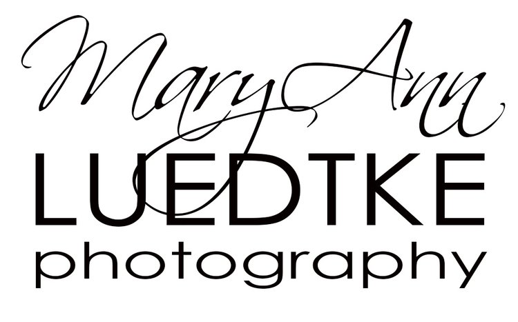MaryAnn Luedtke Photography