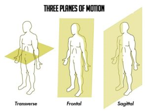 Planes-of-Motion-300x226.jpg