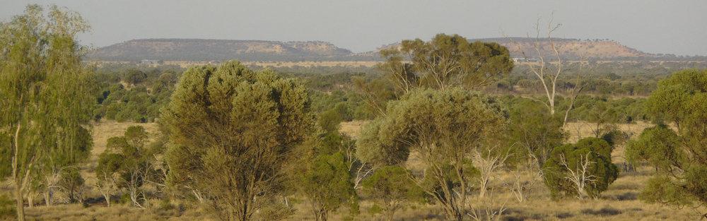 The Galilee Basin [source: rlms.com.au]