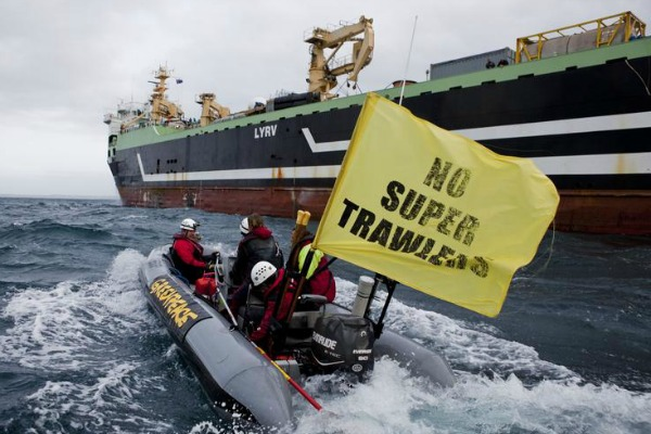 Greenpeace on the front lines