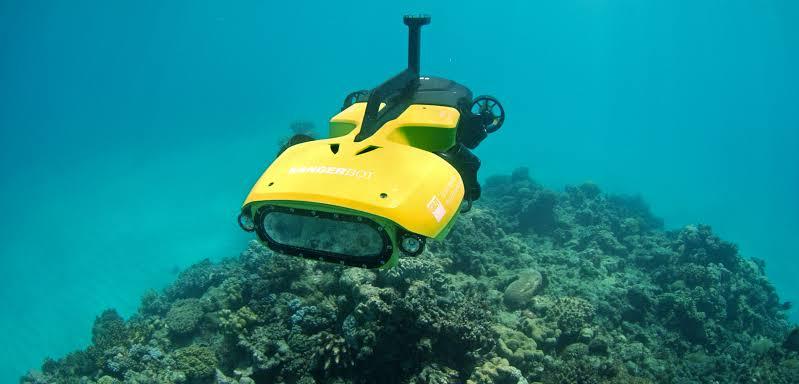 """the """"Rangerbot""""...!!!"""