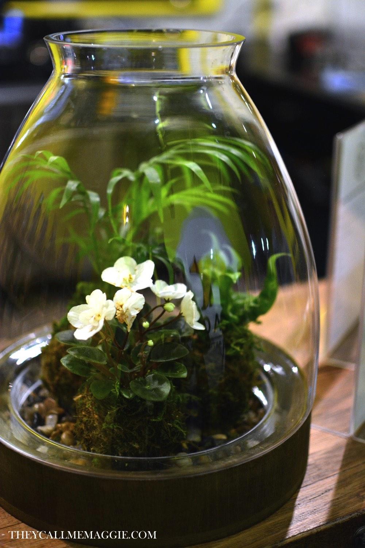 flower-terrarium.jpg
