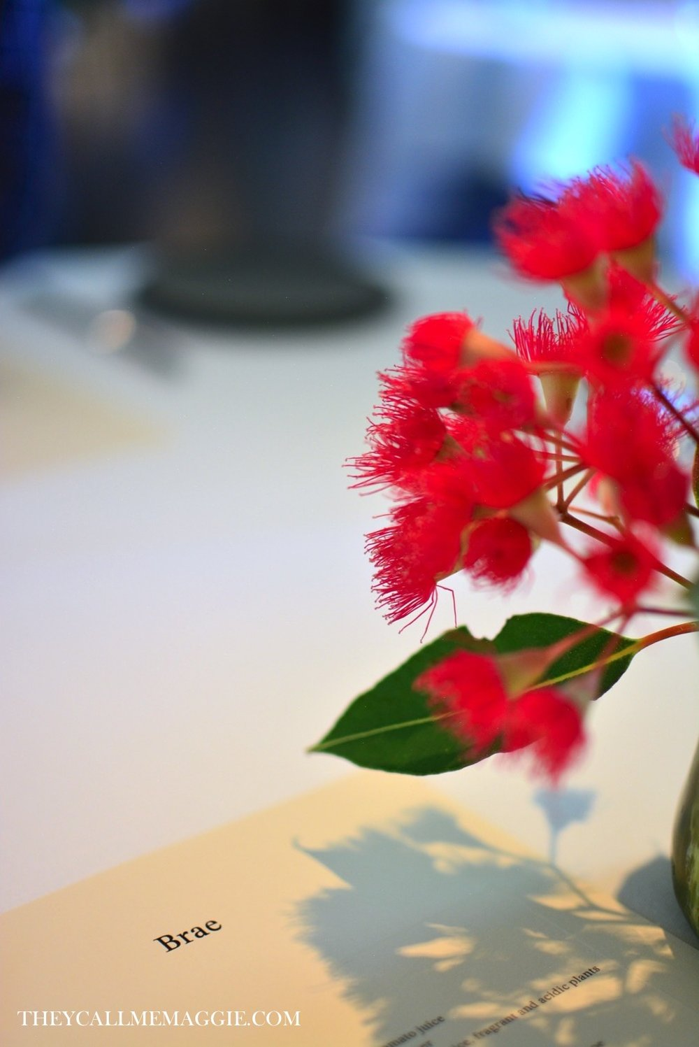 brae-native-blooms.jpg