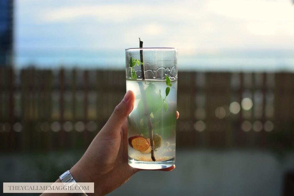 gin-native-australian-plant.jpg