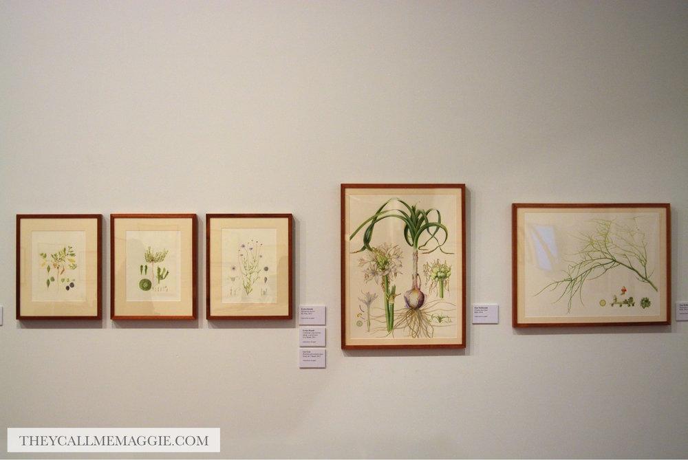 ballarat-art-gallery.jpg