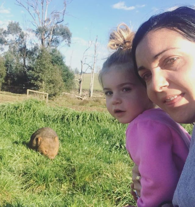 Our farm friend the Wombat 👋🏽