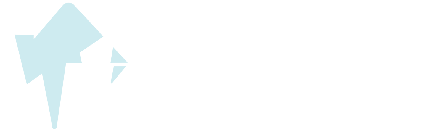 The Traveler's Journey