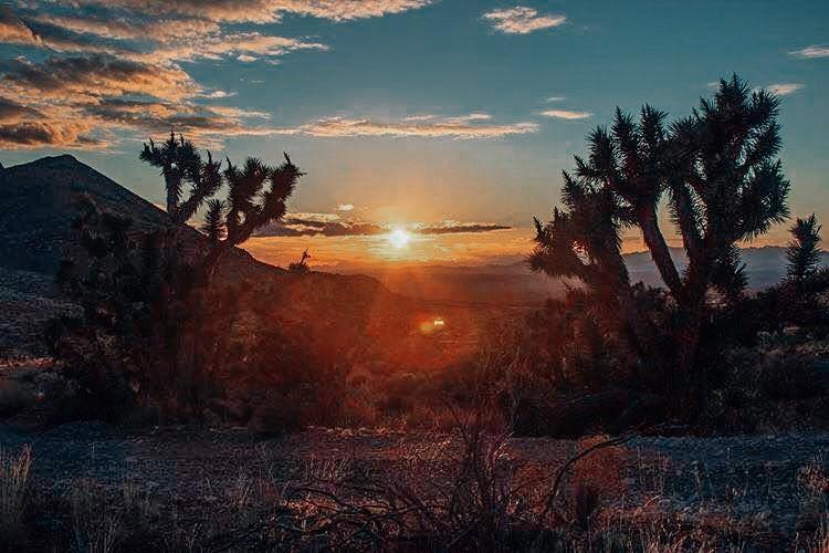 sunset-in-zion-in-winter.jpg