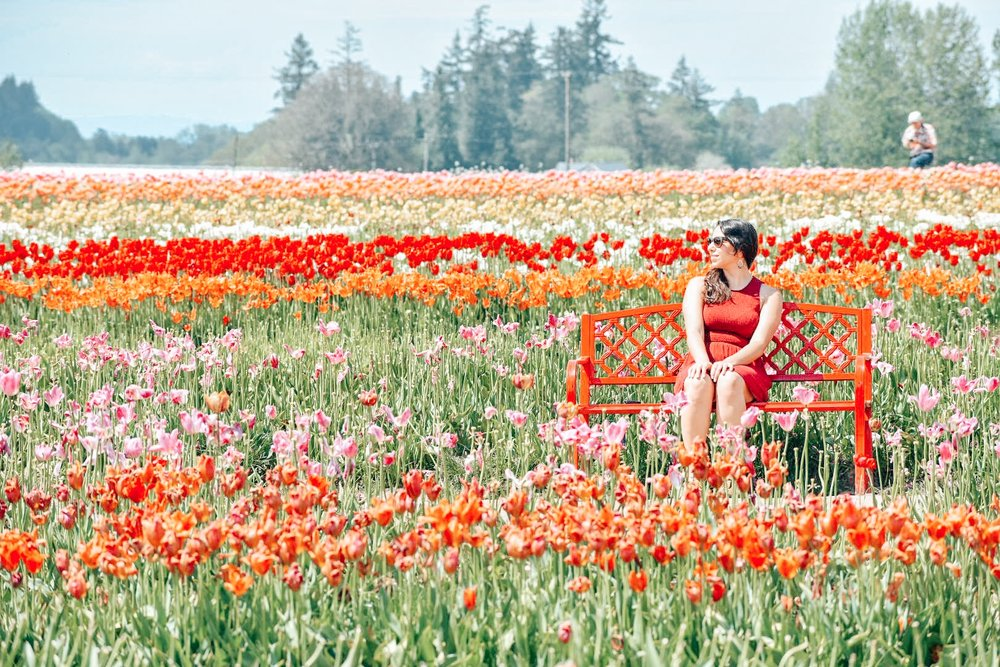 wooden shoe tulip festival.JPG