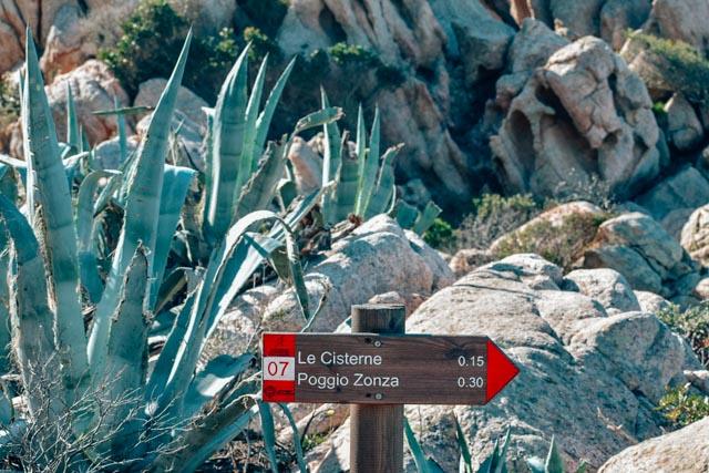 hiking on carprera sardinia.jpg