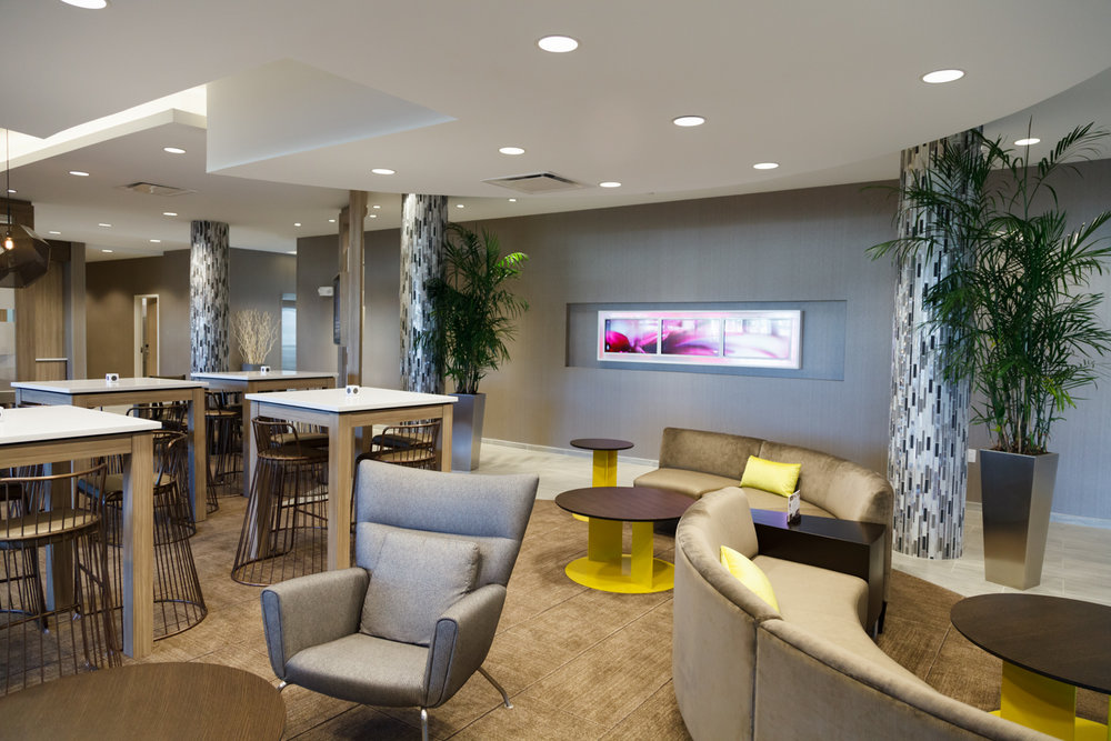 Marriott SpringHill Suites Somerset New Jersey Main Lobby