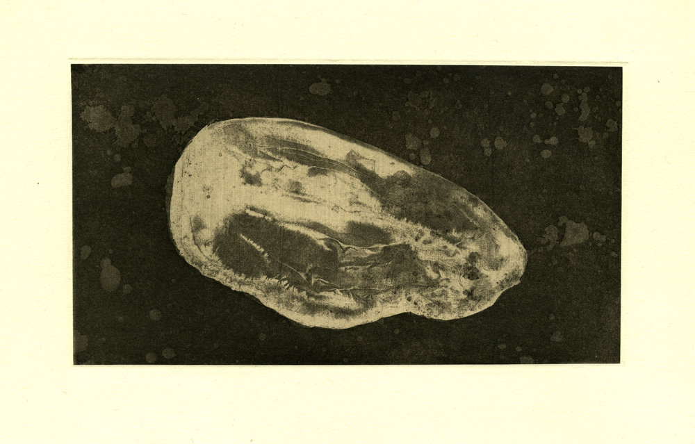 "River Stone,    2018  Etching 5"" x 9"""