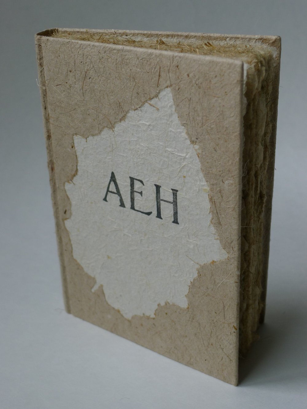 AEH Cover