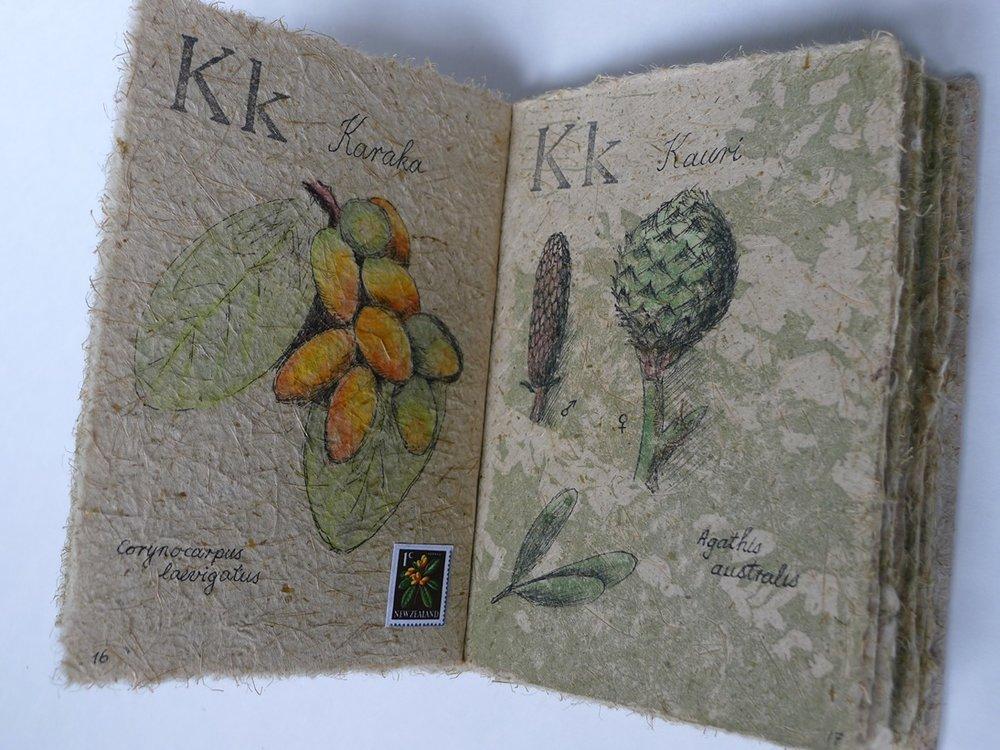 karaka and kauri