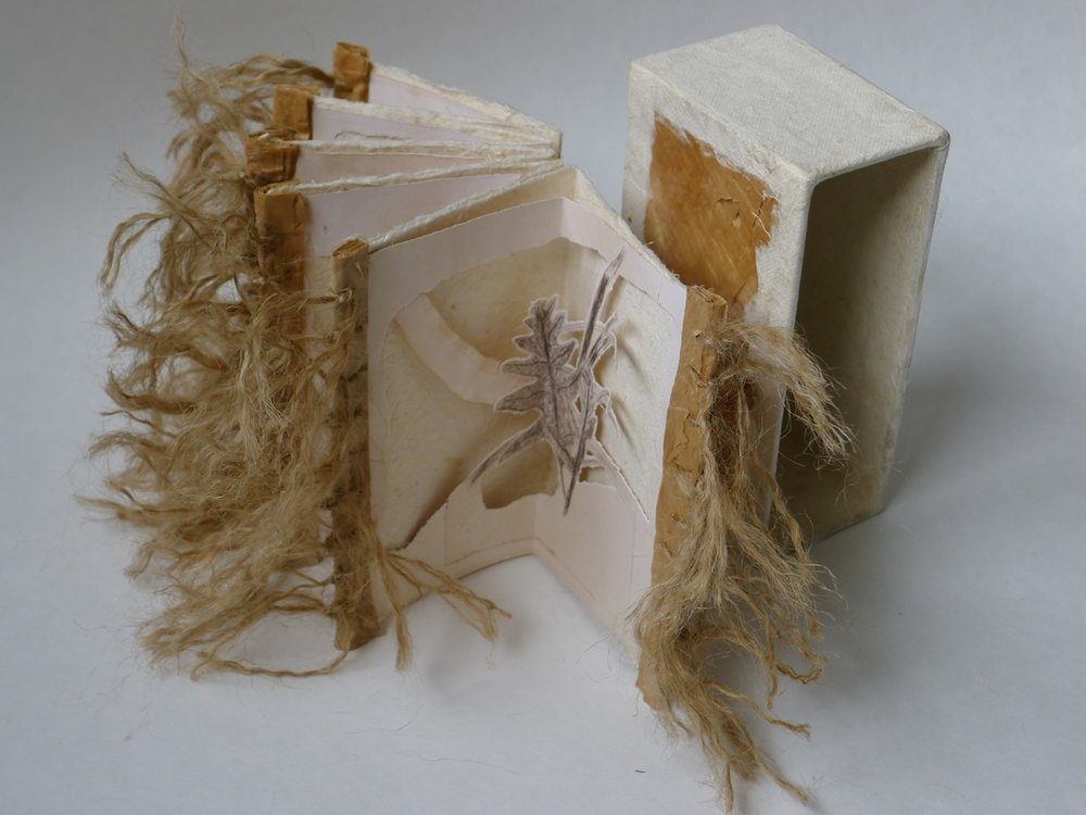 star book with slip case