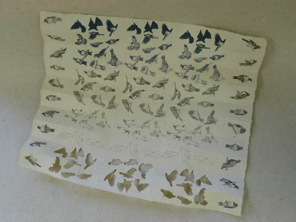 "Patua form printed with kereru and cut out  ""going, going, gone"""