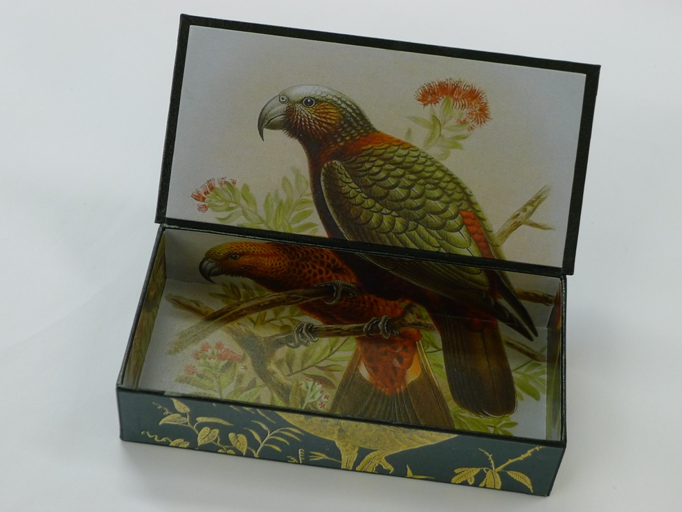 Bullers Birds Book cover and colour plate