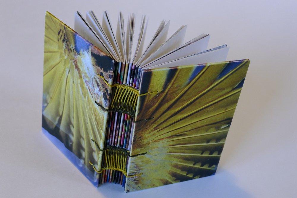 coptic-binding-feathers-wings