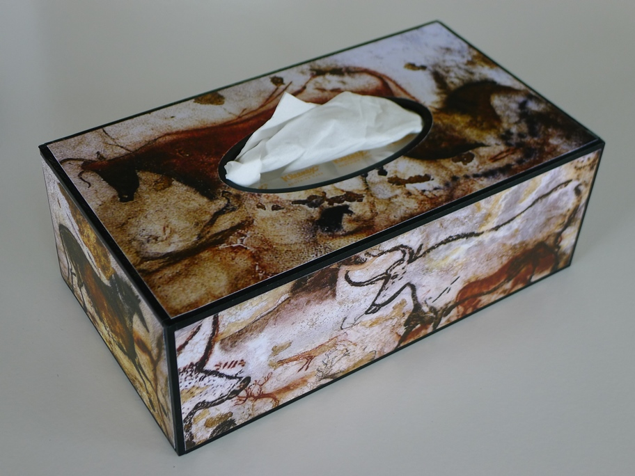 tissue box with lascaux cave painting imagery