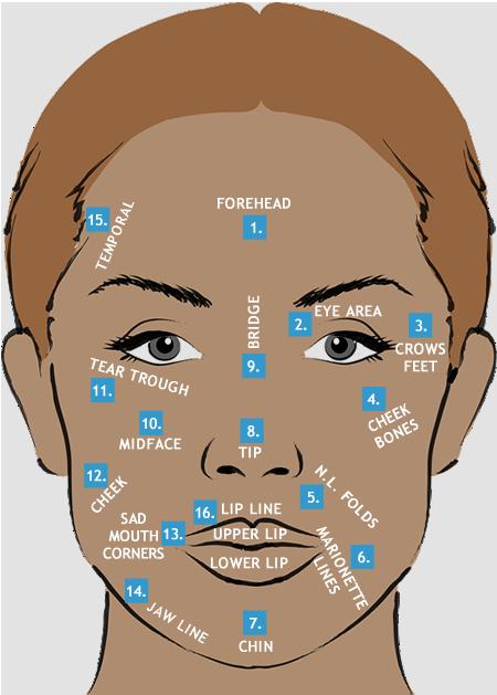 Skin Treatments Facial diagram