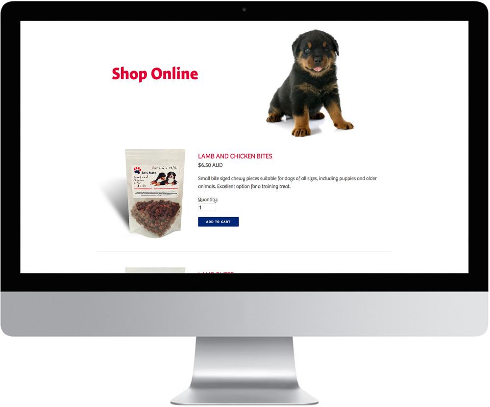 BM Website Examples 2.jpg
