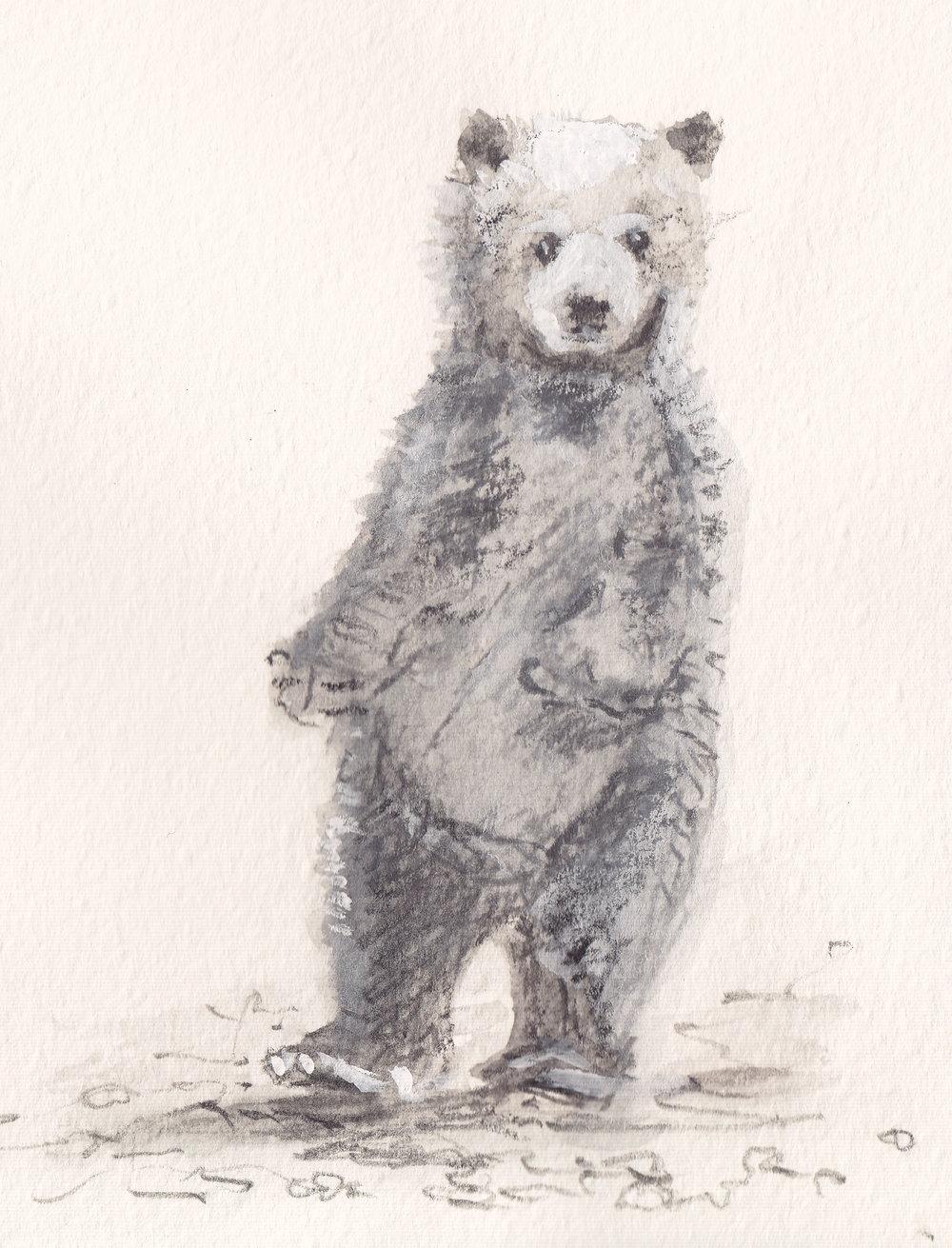 Bear copy.jpg
