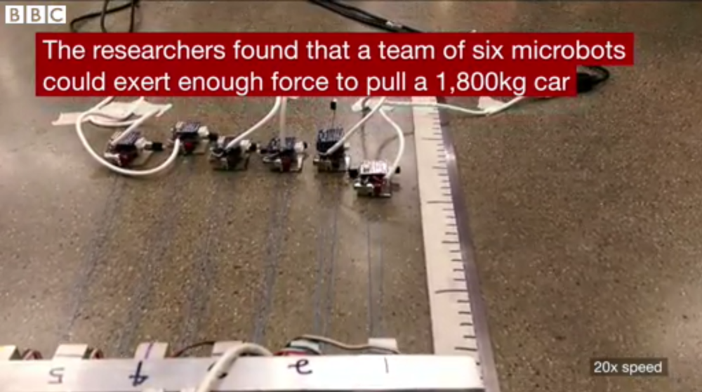 Ants pull a car - photo courtesy of BBC