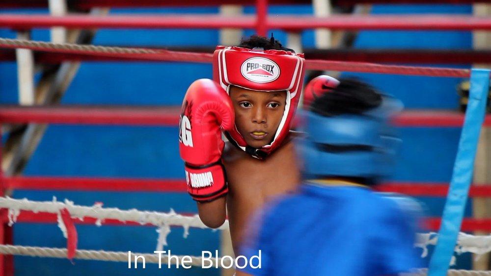 in+blood.jpg