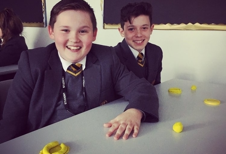 Aureus School Year 7