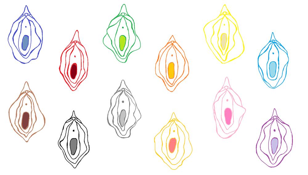 Evie Karkera Sexplain illustrations