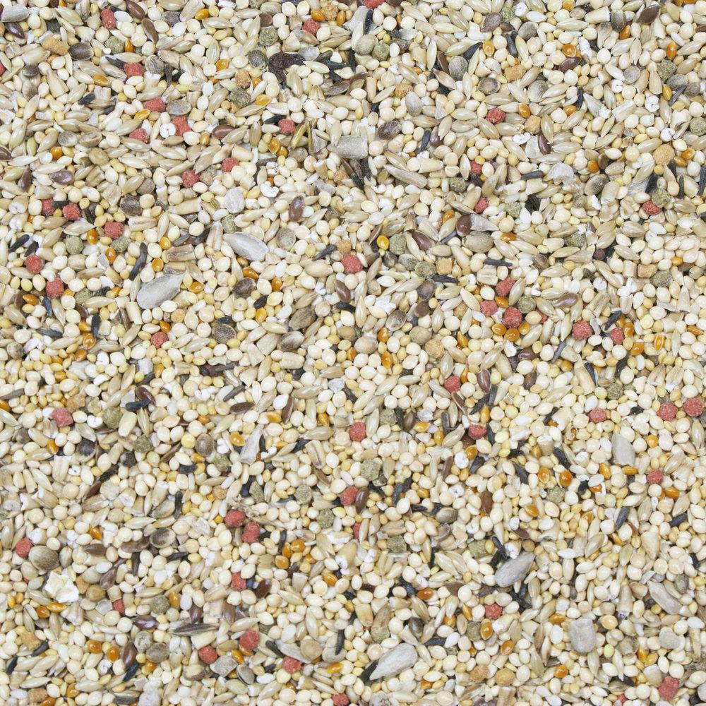 21026_Vita-Seed_Finch_Full-Size.jpg