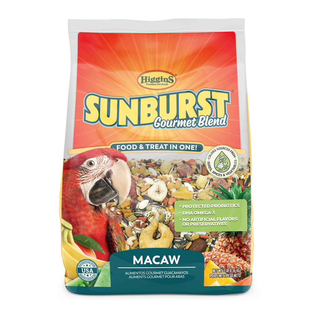 SunburstMacawFull.jpg