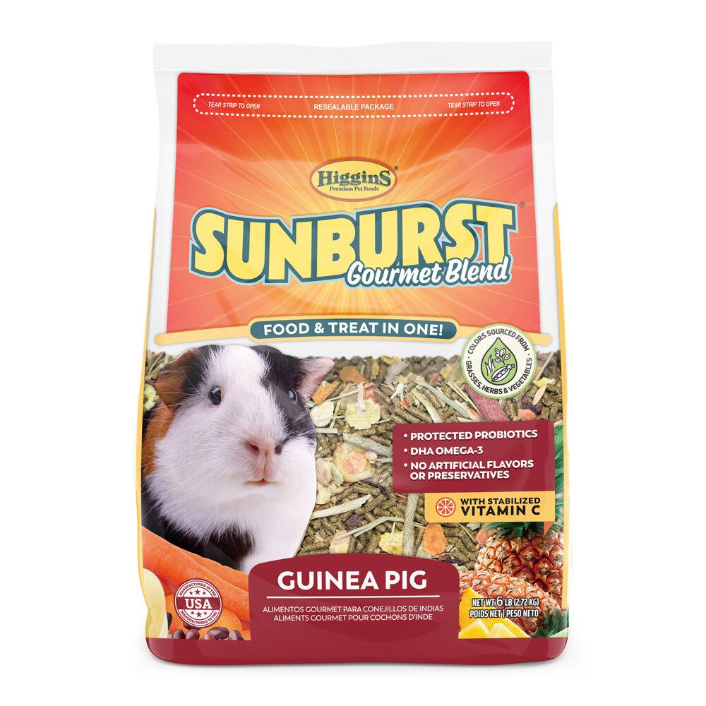 SunburstGuineaPigFull.jpg