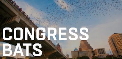Congress Bats