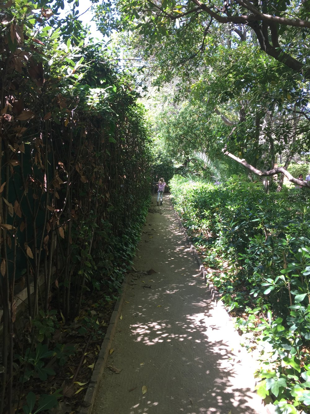 Exploring the beautiful winding paths of one of Barcelona's public parks, La Tamarita.
