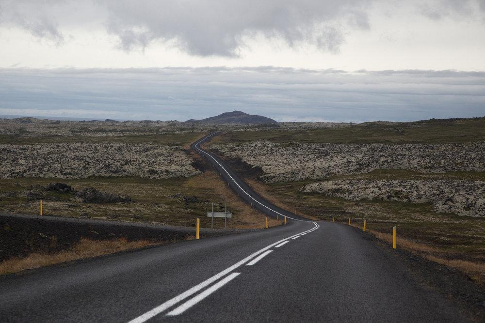 In opdracht van tijdschrift De Tuin in Vier Seizoenen  Artikel over tuinieren in IJsland