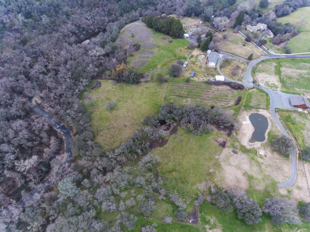 dronerealspring-16.jpg