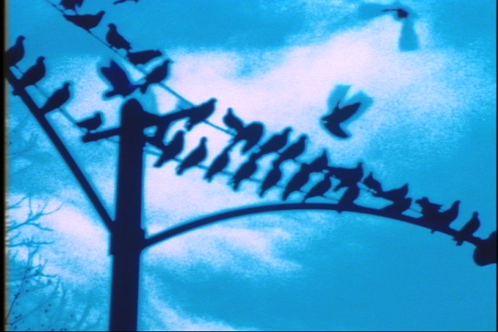 Still from Faultlines, 1998