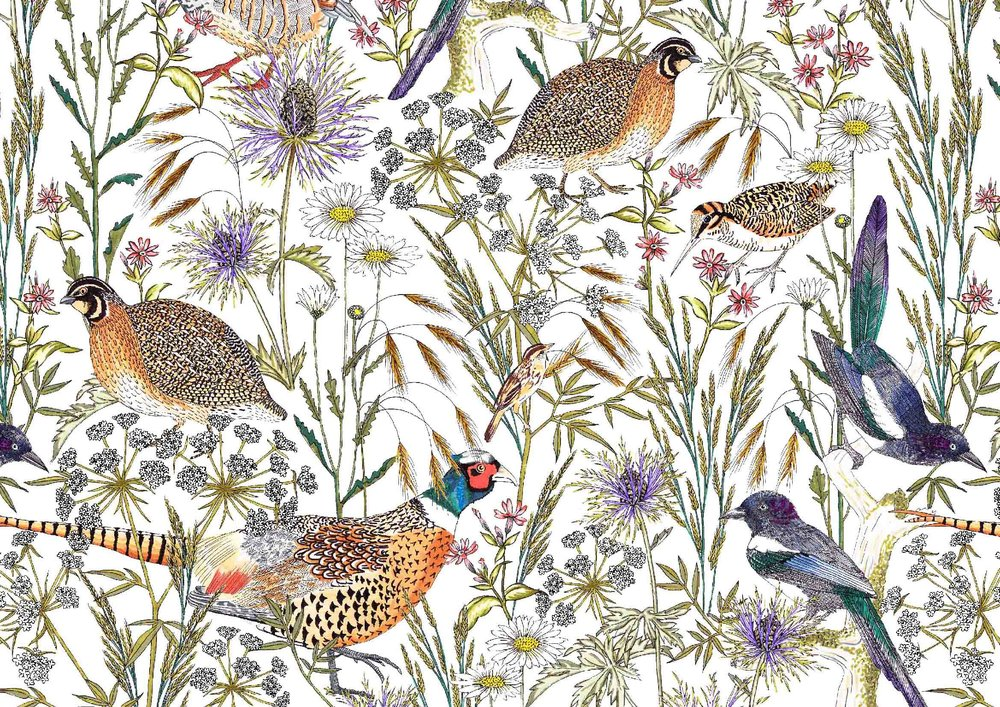 British-Birds-Surface-Pattern-Woodland-Textile-Design-1.jpg