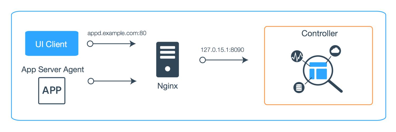 Synology Reverse Proxy Server Set-Up — GRHMLGGT