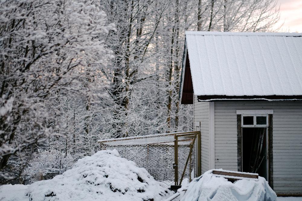 ... och några dagar senare var snön ett faktum igen. Jag tror att den här bilden är tagen den 6:e maj. Galet!