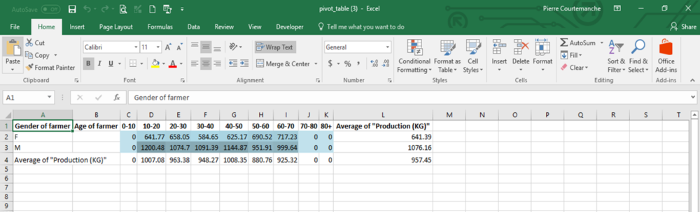 Diagram 5: Pivot table results in Excel