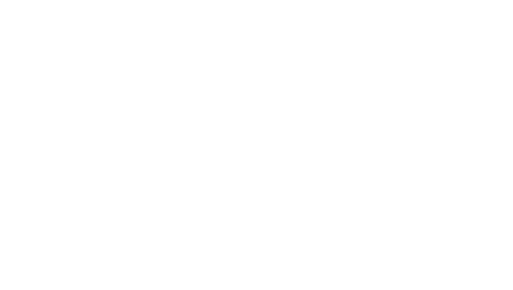 OO Project Type.png