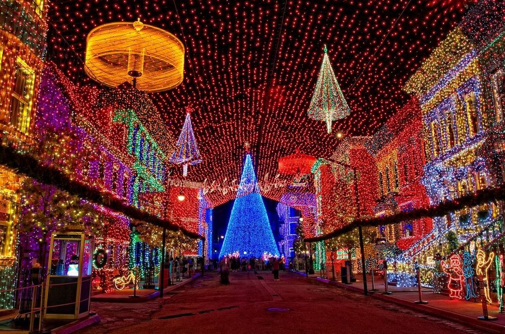 Disney-Osborne-Lights.jpg