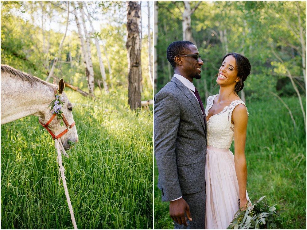 TreeHorseShoot-53_Lizzie-B-Imagery-Utah-Wedding-Photographer-Salt-Lake-City-Park-City-Oakley.jpg