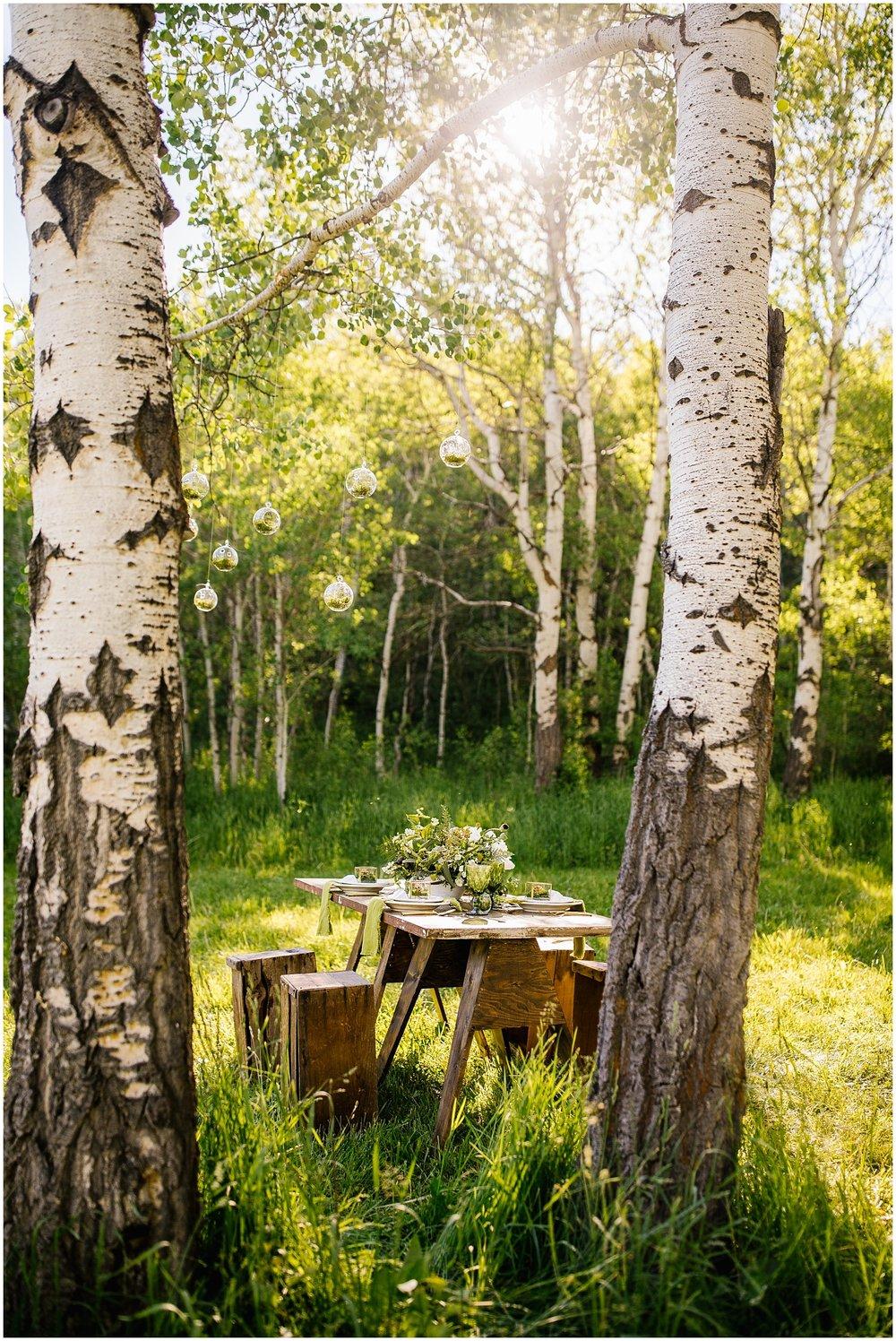 TreeHorseShoot-13_Lizzie-B-Imagery-Utah-Wedding-Photographer-Salt-Lake-City-Park-City-Oakley.jpg