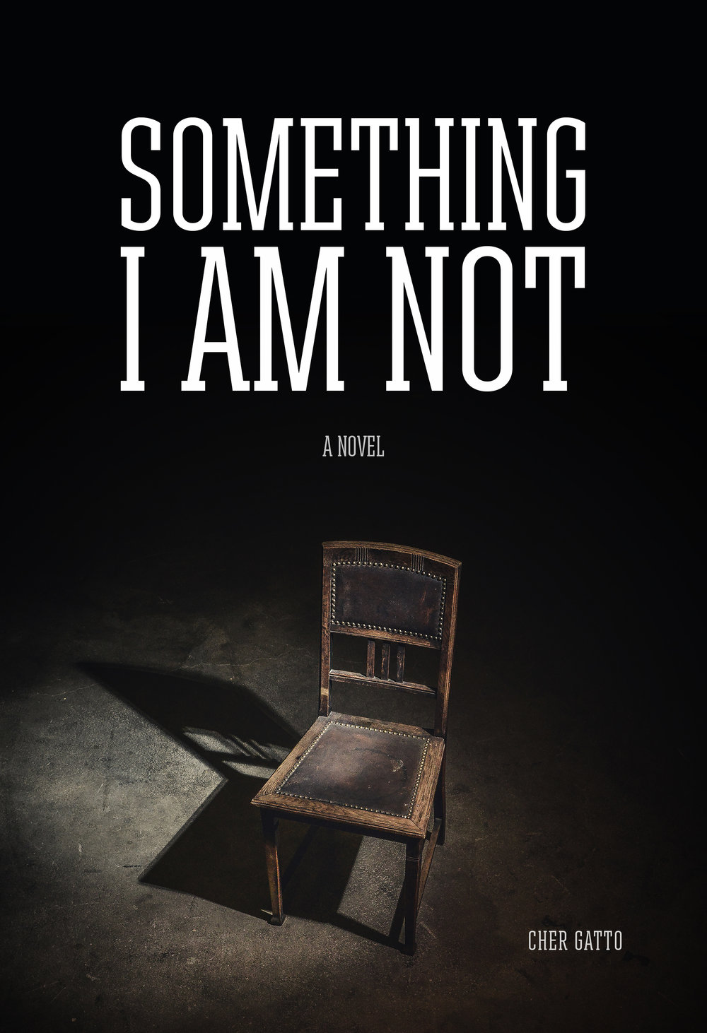 Debut Novel; Something I Am Not; YA Contemporary