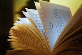 Reading.jpeg